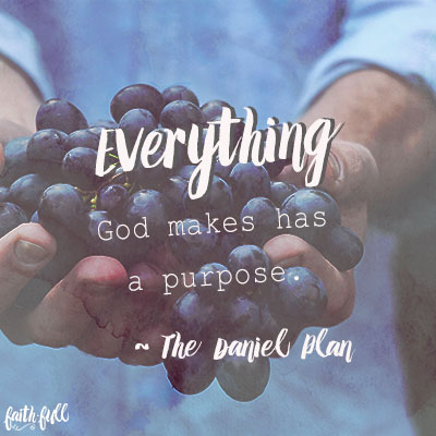 What Does God Say About Your Body? - FaithGateway
