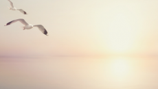 leap-of-faith-to-eternal-life-500x325