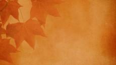 gift-of-autumn-500x325
