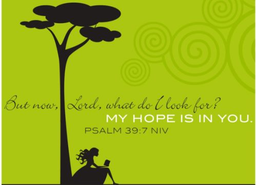 Having Hope Bible Verses Bible Verses About Hope