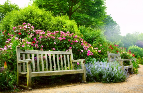 Art bench and flowers in the morning in an English park