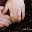 nurturing-curiosity-in-our-children-500x325