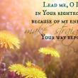 Psalm 5:8
