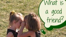 What isa good friend- 500x325
