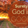 god-is-good-anne-graham-lotz-500x325