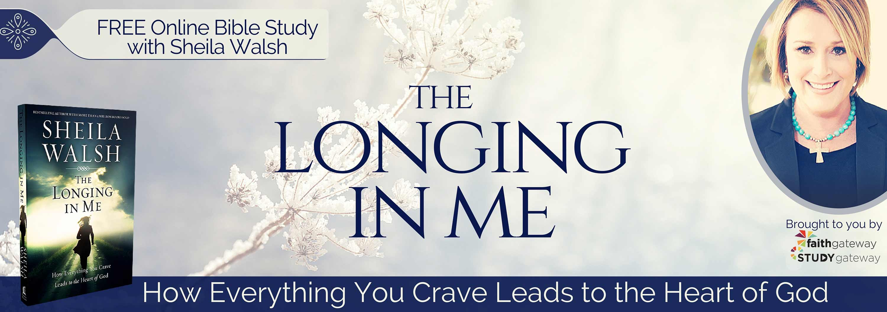 Longing in me online bible study faithgateway registration is now closed for this online bible study please check out faithgateway for more daily inspiration devotions and the latest information malvernweather Choice Image