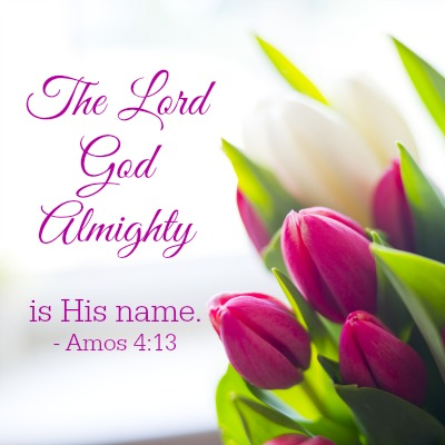 The Lord God Almighty Is His Name. Amos 4-13 400x400