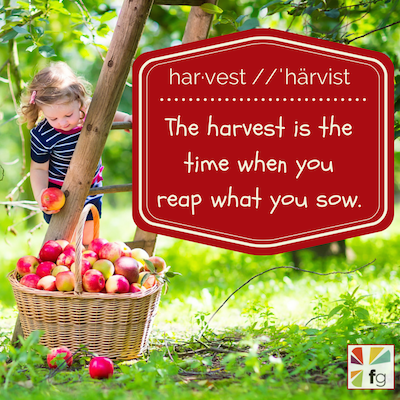 what-harvest-means-to-my-family-400x400